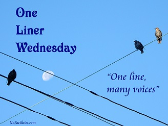 #1linerWeds badge by Dan Antion